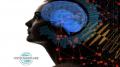 Pachet NeuroFeedback